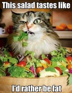 salad cat